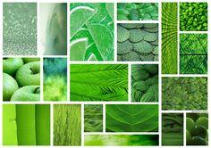 By @eleauerrea94 #board #collage #green #verde #panel #inspiration