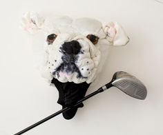 Custom Golf headcovers and puppets Golf Club Covers, Golf Club Sets, Vintage Golf Clubs, Golf Wedges, Felt Puppets, Discount Golf, Golf Club Headcovers, Golf Trolley