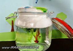 10 experimenty s vodou, ktoré môžete urobiť doma Creative Activities, Toddler Activities, Experiment, Diy Puffs, Winter Crafts For Kids, Business For Kids, Kids And Parenting, Diy And Crafts, Education