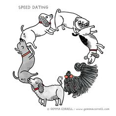 Speed Dating with Dogs on http://www.drlima.net