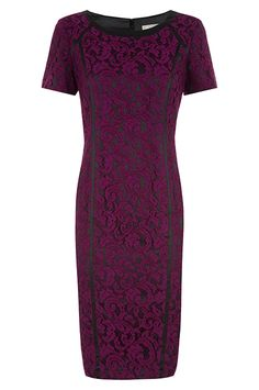 Planet Occasionwear Black & Wine Lace Dress