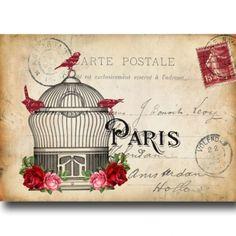 Postcard Birdcage 2