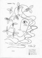 Předlohy pro paličkování Kategorie produktů | Alena Třešňáková - FolkArt | Page 9 Female, Art, Art Background, Kunst, Performing Arts, Art Education Resources, Artworks