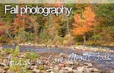 things i love about fall - fall photography