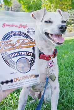 HAPPY HAZEL: @grandmalucys All Natural Dog Treats Review!!