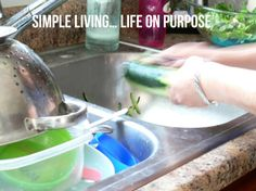 Simple Living and Life on Purpose