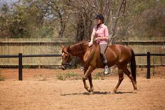 Live Your African Dream! Horse Riding Holidays South Africa