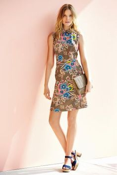 Buy Floral Print Shift Dress from the Next UK online shop