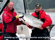 Breaking the 50 pound barrier once again! Another huge Tyee salmon landed in Naden Harbour, BC.