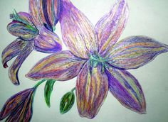Colored Pencil Flowers Drawing - Colored Pencil Flowers Fine Art Print