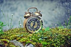 O tempo não para...