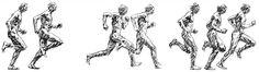 L'efficienza nella corsa - Personal Trainer Bologna, Stefano Mosca illustra la tecnica di corsa per consumare meno calorie e limitare gli infortuni.  Nuovo articolo su #corsa e #podismo  #PersonalTrainer #Bologna #sport #running #run #correre #sport #atletic