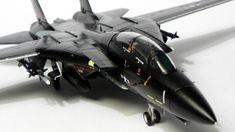Grumman F-14 Tomcat Black rabbit