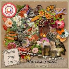 Collections :: Coordinated Collections :: Harvest Sunset - page 2