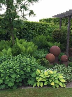 9 Confident Tips AND Tricks: Backyard Garden On A Budget Cinder Blocks easy garden ideas on a budget.Dry Shade Garden Ideas modern backyard garden back yard. Back Gardens, Small Gardens, Outdoor Gardens, Dream Garden, Garden Art, Garden Cottage, Ferns Garden, Shade Perennials, Shade Plants