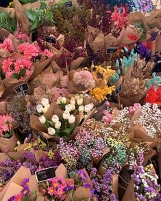Flower Aesthetic, Sky Aesthetic, Travel Aesthetic, Jolie Photo, My Flower, Pretty Pictures, Wall Collage, Planting Flowers, Flower Arrangements