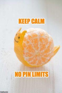 Orange Food Art Snail | Created by N. E. Poe  (Imgflip.com)