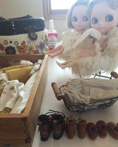 撮影会前の準備風景です。✨👭💛 着替えを自分達でやって貰えると助かるのですが...📷👭💦 #blythe#outfit#handmade#blythedoll#dollphoto#dollInstagram#dollphotogrphy#cat#puppet#ドール#アウトフィット#harusya#ブライス#手作り#mimosa