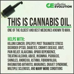 This is Cannabis oil. One of the oldest and best medicines known to man. Helps with: killing cancer, epilepsy, post traumatic stress disorder (PTSD), diabetes, gout, pain relief, glaucoma, opioid dependence, treating alcohol abuse, insomnia, psoriasis, shingles, anorexia, asthma, fibromyalgia, rheumatoid arthritis, migraine headaches, Dravet Syndrome, multiple sclerosis, Alzheimer's and many more conditions and diseases every day are being researched and discovered.