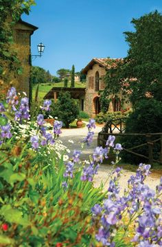 ♦ See The World Travel Map ♦ **Monsignor Della Casa Country Resort & Spa - Florence, Italy** Toscana, Villas, The Places Youll Go, Places To See, Beautiful World, Beautiful Places, Under The Tuscan Sun, Visit Italy, Florence Italy