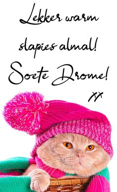 Good Morning Beautiful Images, Afrikaanse Quotes, Goeie Nag, Good Night Wishes, Sleep Tight, Winter Hats, Crochet Hats, Messages, Night Night