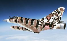 Easy Tiger. Travel the world with Private Jet Charter. Charter a Jet with us - http://www.privatejetcharter.com