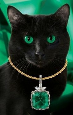 #Black Cats love Emeralds..#Luxury.com