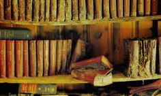 book dust - Google Search