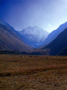 3 Day Walk, Peru Travel, Lost City, Machu Picchu, Trail, Dreams, Mountains, Gold, Bergen