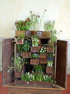 Creative dresser drawers planter.