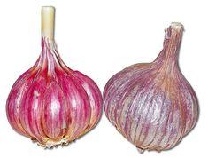 Slavin Eggplant, Onion, Vegetables, Food, Onions, Essen, Eggplants, Vegetable Recipes, Meals