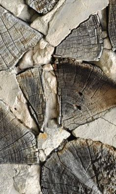 wood reference texture cut log cross section material structure environment Foto Macro, Visual Texture, Creation Deco, Wabi Sabi, Oeuvre D'art, Shades Of Grey, Belle Photo, Textures Patterns, Textile Design