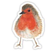 Freches Rotkehlchen - little robin Sticker