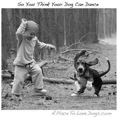 so you think your dog can dance | A Place to Love Dogs