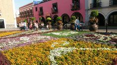 Tapete floral, Semana Santa
