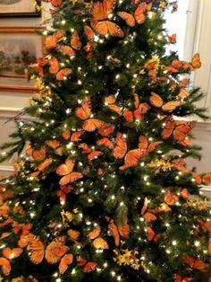 orange christmas tree at DuckDuckGoUp for your consideration and pleasure. Christmas 12 Orange Monarch Butterfly Ornament Decorations These hand painted butterflies areLil has asked for a butterfly Christmas tree this year. Orange Christmas Tree, Beautiful Christmas Trees, Christmas Tree Themes, Noel Christmas, Holiday Tree, Rustic Christmas, Christmas Lights, Holiday Decor, White Christmas