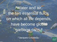 30 Best Global Warming Quotes Images Our Planet Environment Save