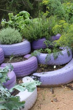 More recycled tires :) I have a billion tires. I like the herbs in them or maybe strawberries.
