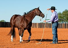 Every single time you walk around your horse to change sides you're actually signaling to him that you are submissive to him. Instead, you should be able to change sides without having to move your feet. This might seem like a simple concept, but believe me, your horse notices every single change. Every single time you can get your horse to move his feet, you're gaining a little bit more respect.