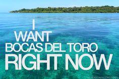 You know its true. #BocasdelToro #Panama http://bocasdeltoro.travel/
