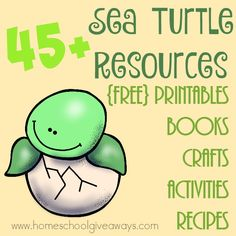 Whether you're studying Sea Turtles or just ocean animals in general, check out these great resources! Includes printables, books, crafts, recipes and MORE! :: www.homeschoolgiveaways.com