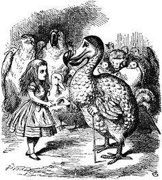 John Tenniel ~ The Giving of the Thimble (Alice meets the Dodo)