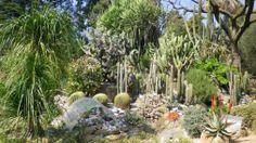Fiabe all'Orto Botanico, magia di primavera per grandi e bambini