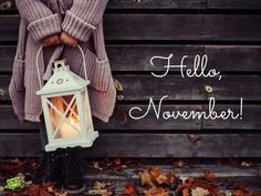 discovered by Winter Memories Hello, November!