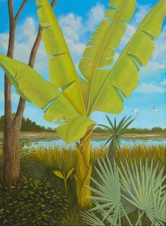 1st Panel of an Everglades themed triptych