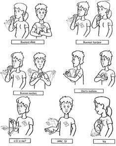 Expresiones básicas