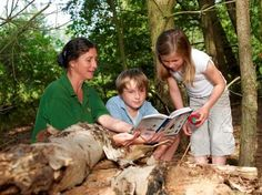 Educational events teaching children about the natural world.
