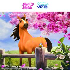 🎉 Show your Spirit! 🎉 We want to see how you're celebrating the release of DreamWorks Spirit Riding Free on Netflix ( Caballo Spirit, Spirit The Horse, Horse Birthday Parties, 3rd Birthday, Horse Games, Free Horses, Star Stable, Cowgirl Party, Horse Drawings