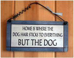 Wonderful World of Dogs