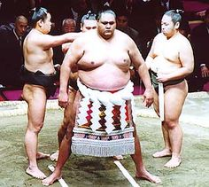 HOW TO EAT LIKE A SUMO WRESTLER. or rather, habits to ditch immediately unless you want to eventually look like one.